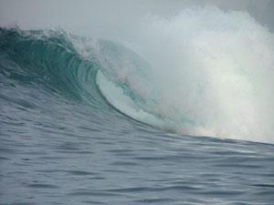 indo2005-068