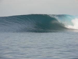 indo2005-51