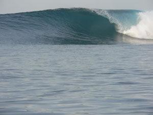 indo2005-52