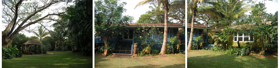 indo2010_home